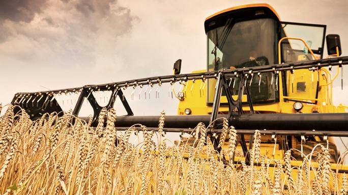 ترجمه تخصصی مهندسی کشاورزی و صنایع غذایی