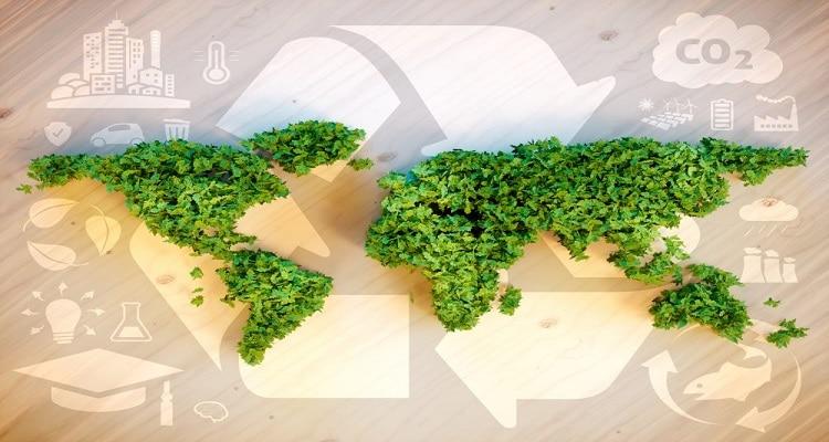 ترجمه کتاب محیط زیست